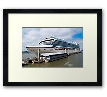 Crown Princess  Framed Print