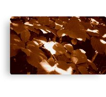 Summer Shadows in Sepia  ^ Canvas Print