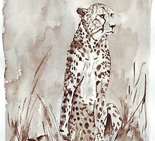 The Cheetah (Acinonyx jubatus)  by Maree Clarkson