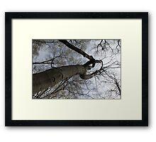 swinging Framed Print
