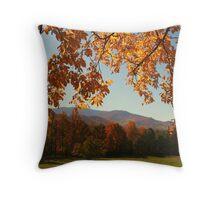 An Autumn's View Throw Pillow