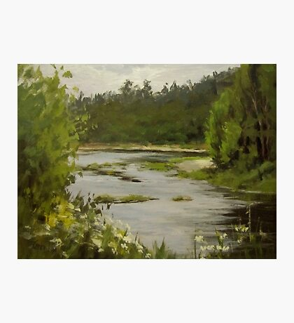 Winery River Photographic Print