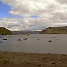 Portree Harbour by Carol Bleasdale