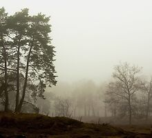 Silent trees in misty land 1 by steppeland