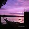 Colours of the Rainbow - Purple Sunsets