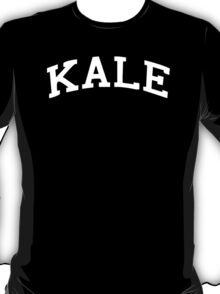 KALE Beyonce Flowless Gym Funny Gift Fashion MusiC Tee Top UNISEX T-Shirt