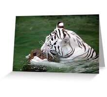Playful White Tiger II Greeting Card