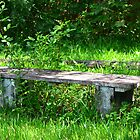 Bench of Time by Rene  Triay
