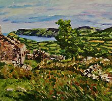 In the Townland of Tirkily, Glenaan, County Antrim by Laura Butler