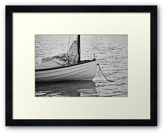 Sail Boat by Robert  Miner