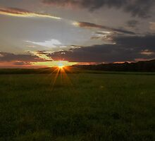 Sunset on the Cornfield by John  Kapusta