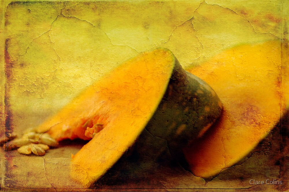 Winter Pumpkin  by Clare Colins