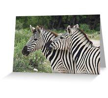 Zebras, Namibia Greeting Card