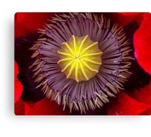 Heart of a Poppy Canvas Print