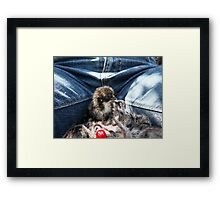 Chick and Me Framed Print