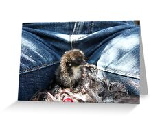 Chick and Me Greeting Card