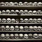 Skulls by Peter Hammer