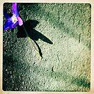 Sweet Violet by Marita