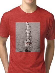 Sea Birds - And a Duck! Tri-blend T-Shirt