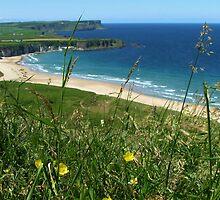 White Park Bay, N Ireland by stephangus