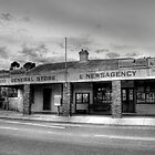 General Store by Leigh Monk