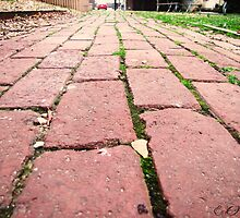 follow the brick road by emcphotography