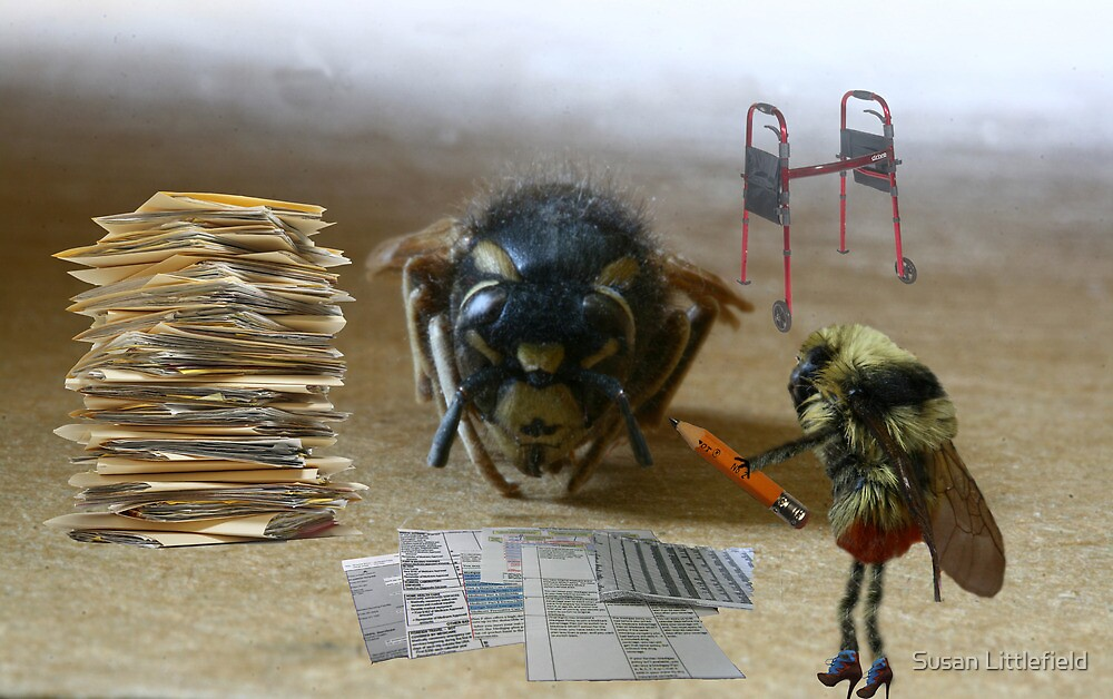 Medicare Part Bee by Susan Littlefield