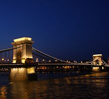 blue hour at the blue danube, dressed in shimmering golds! by Iris Mackenzie