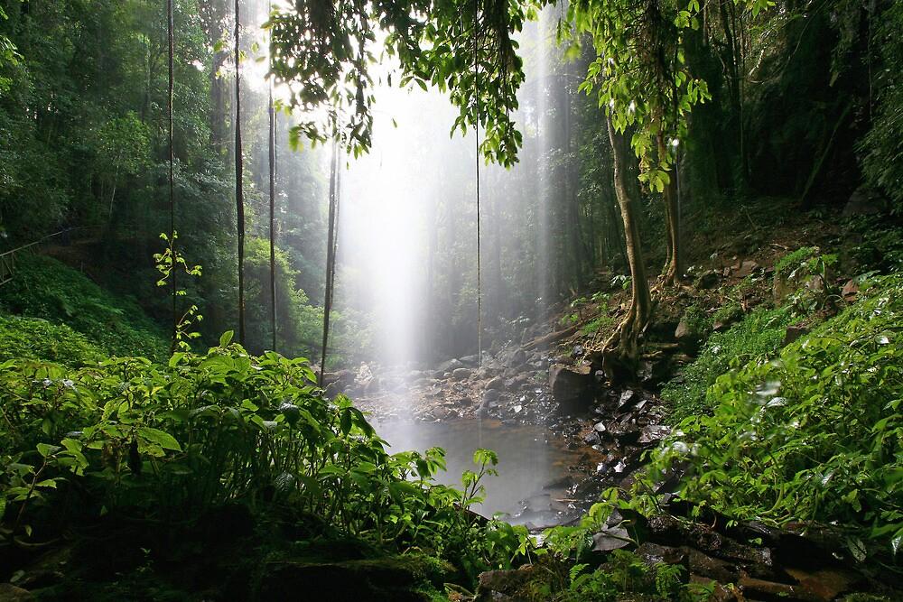Crystal Shower Falls by Cameron B
