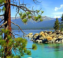 """Lake Tahoe Colors"" by Lynn Bawden"