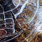 Frozen Ripple by a-c-tree
