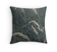 In memory of summers past Throw Pillow