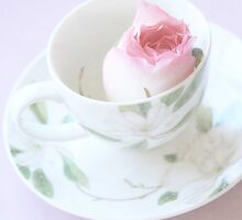 Fine Art Rose in a Teacup by Nicola  Pearson