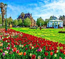 Painted Tulips by the Bendigo Conservatory by sjphotocomau