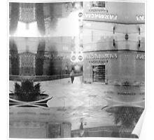 P1430597 _Luminance _Rasterbator _XnView _GIMP Poster