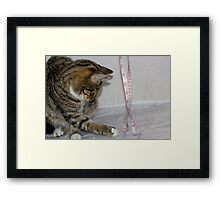 Am I fat or not? Framed Print