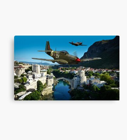 Lords of the Skies Canvas Print