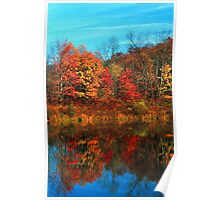 REFLECTION IN POND,AUTUMN Poster