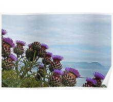 Giant Thistles ~ Lyme Regis Poster
