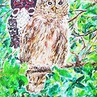 Spirit of the Barred Owl by Jennifer Ingram