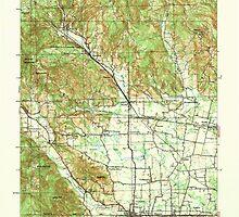 USGS Topo Map Oregon Gales Creek 282508 1941 62500 by wetdryvac
