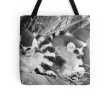 Ring Tails Tote Bag