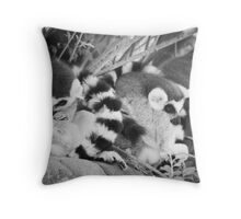 Ring Tails Throw Pillow