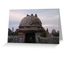 pigeon roost-The Castillo St Augustine, Florida Greeting Card
