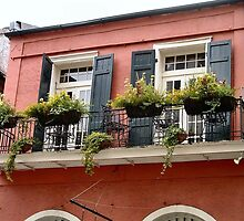 Flower Boxes- French Quarter, New Orleans, Louisiana by kathyrussell56