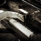 Jazz Fingers by mlphoto