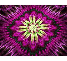 Flower Ribbon Photographic Print