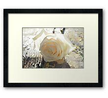 White Rose Sun Framed Print