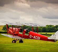 Tiger Moth by mlphoto