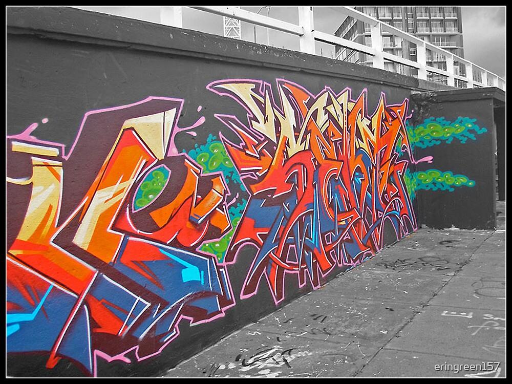 Urban Art by eringreen157